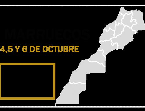 RECOGIDA DE PICHONES EN MARRUECOS, LOS DÍAS 4, 5 Y 6 DE OCTUBRE
