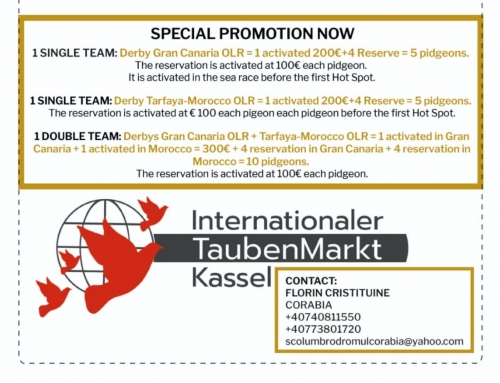 KASSEL SPECIAL PROMOTION: LAST MONTH OF COLLECTION FOR THE CHALLENGE